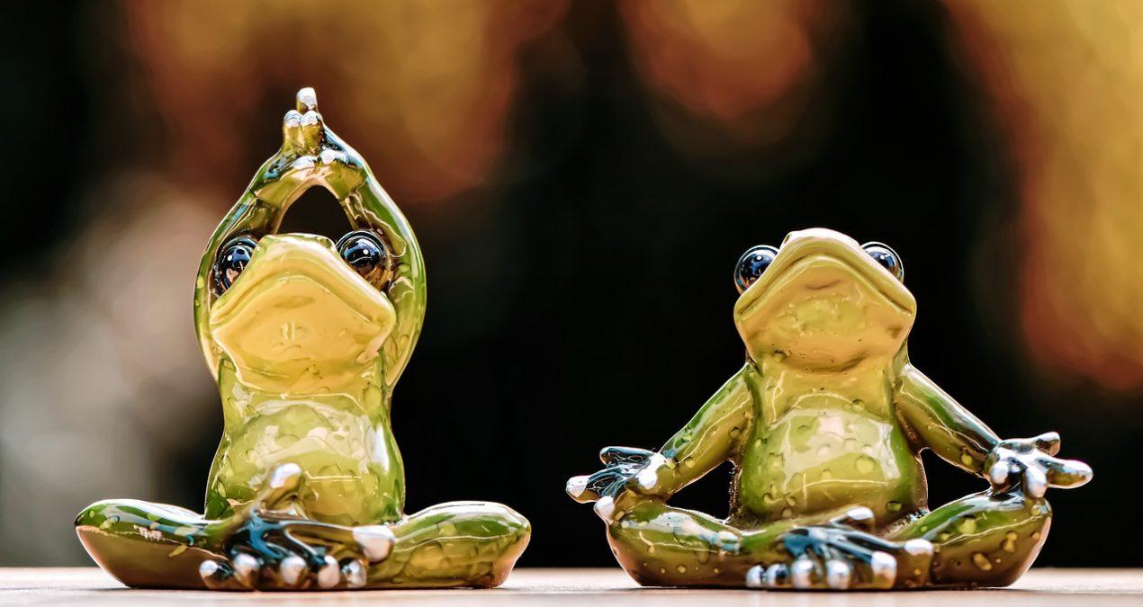 Fare finta di essere zen