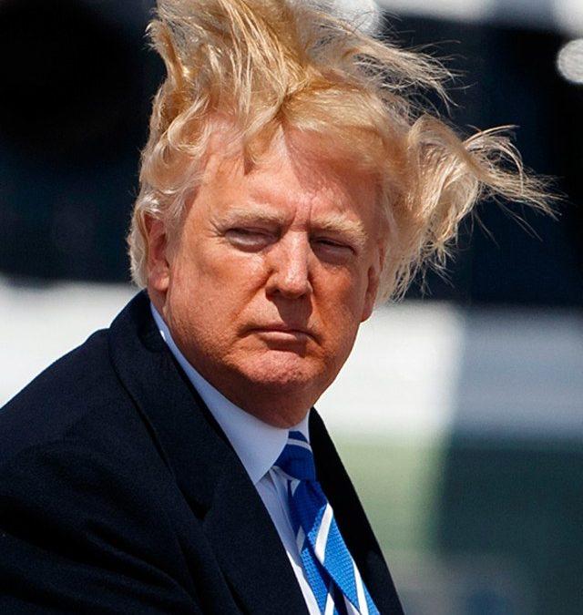 Se Trump avesse le treccine