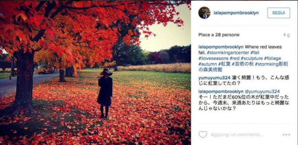 L'autunno su Instagram e nella realtà